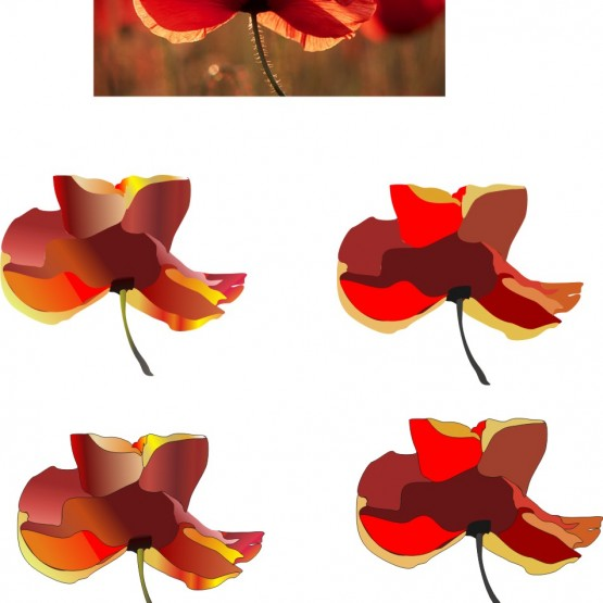 red_poppy_-_image_creating_20130318_1422432018